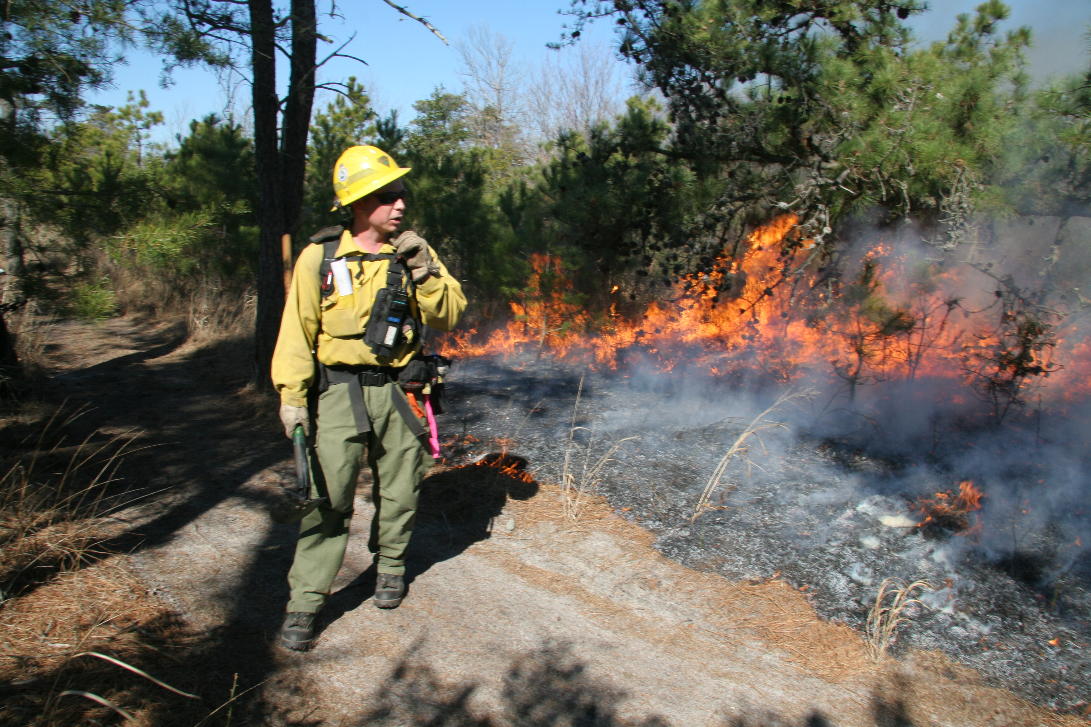 Cape Henlopen Rx Burn (29)